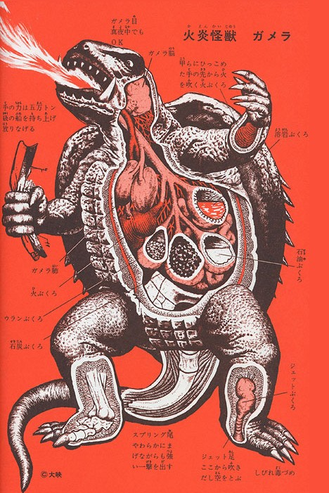 "This illustration of ""Flaming Monster Gamera"" (from An Anatomical Guide to Monsters) reveals eyes that can see in the dark, arms strong enough to lift and throw a 50-ton boat, and ""fire sacks"" that let Gamera shoot flames from his hands."