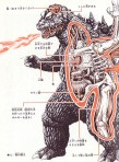 xanatomy_godzilla.jpg.pagespeed.ic.D9-Of-9n3U